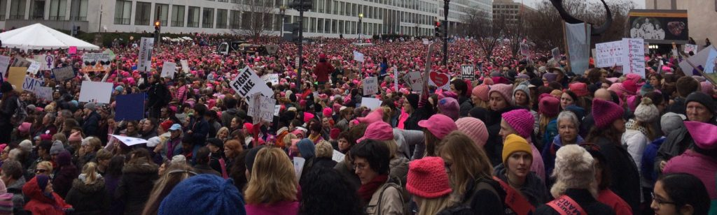 Mass of Demonstrators, Pink Hats, cropped more