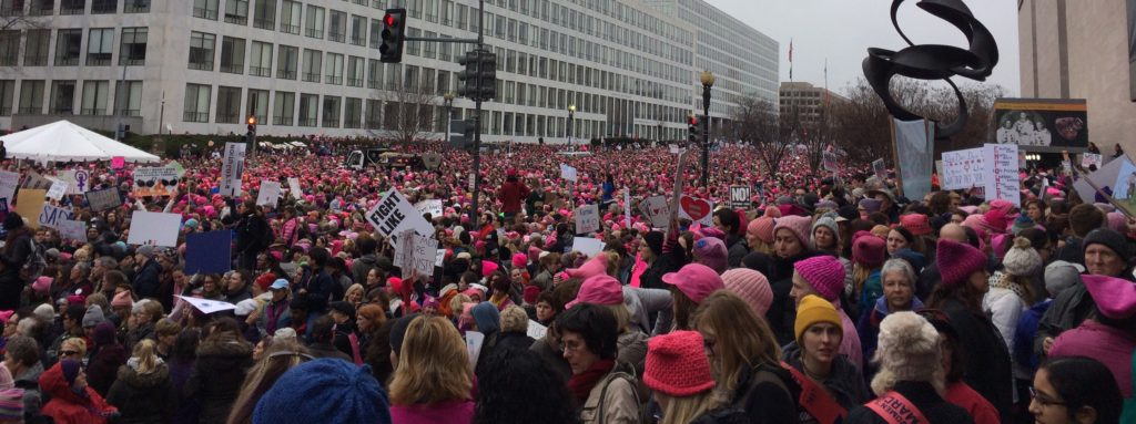 Mass of Demonstrators, Pink Hats, cropped