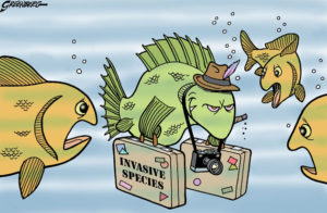 Invasive Species Fish Cartoon