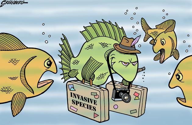 Invasive Species Fish Cartoon